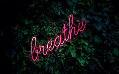 Let's Breathe Together