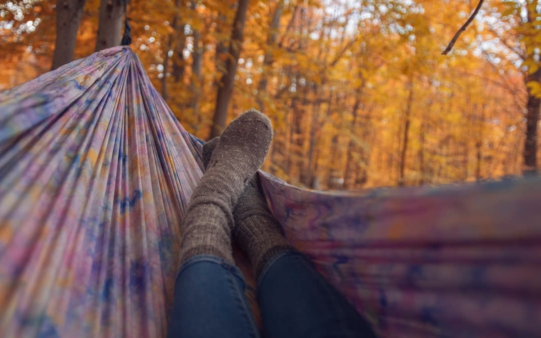 feet hammock fall trees